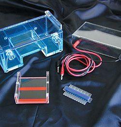mini horizontal electrophoresis