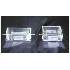 Lantern Slide Electrophoresis